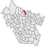 Valea_Salciei